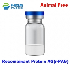Recombinant Protein AG(r-PAG)