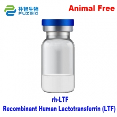Recombinant Human Lactotransferrin (LTF) Cell Cult...